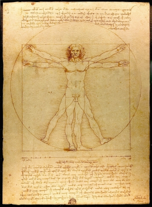 Vitruvian Man, aka Canon of Proportions