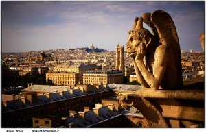 Gargoyles site on Paris rooftops