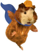 Vacation Rental Guinea Pig on a mission