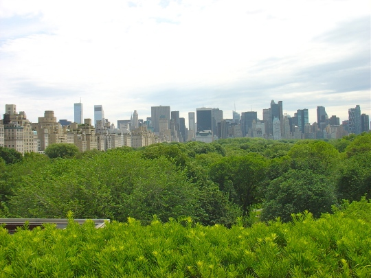 Central Park from Rooftop Cafe at Metropolitan Museum of Fine Art