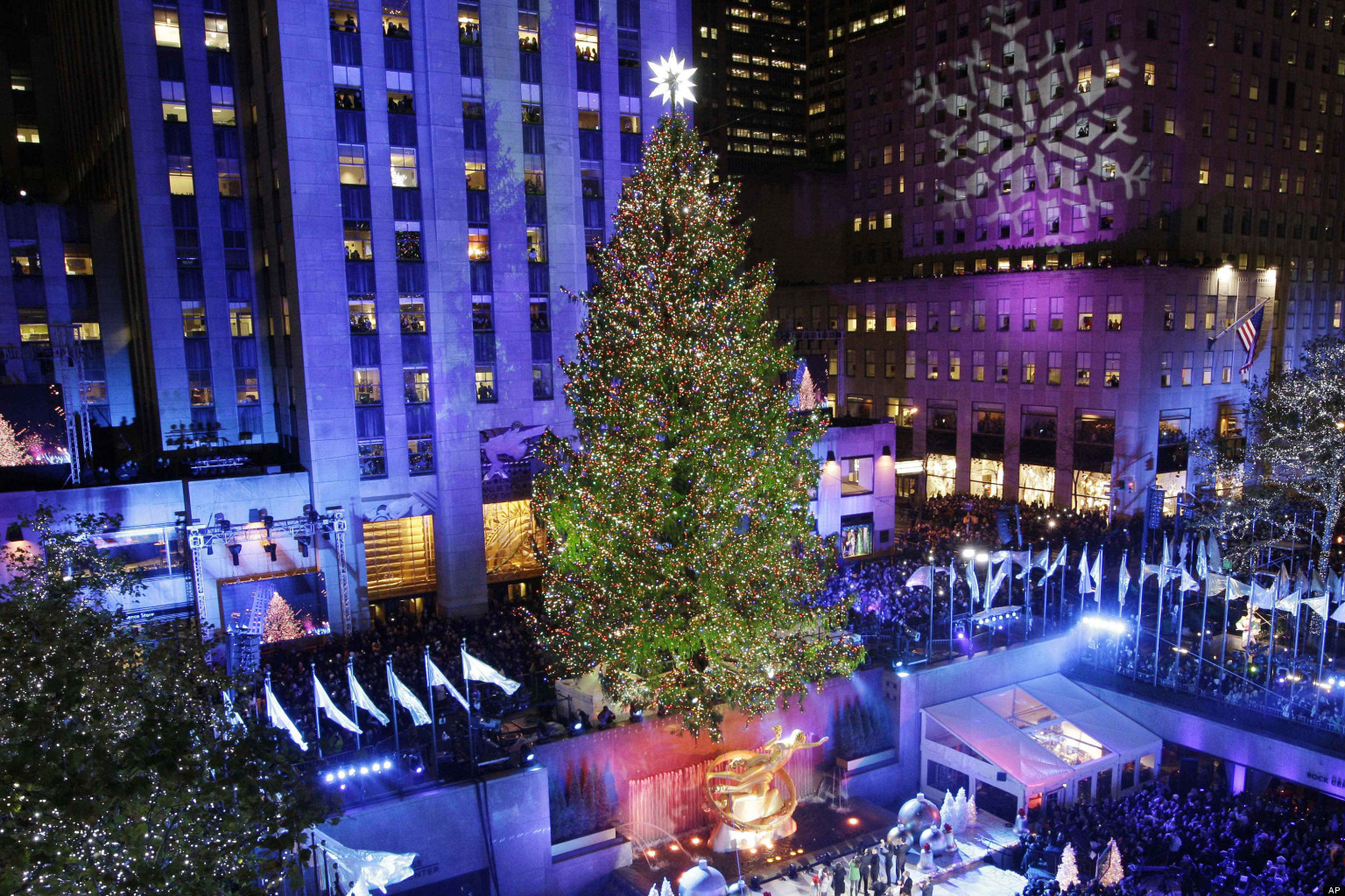 Tallest Christmas Tree New York